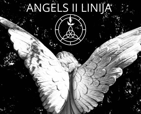 Запущен проект Angels II линия 6