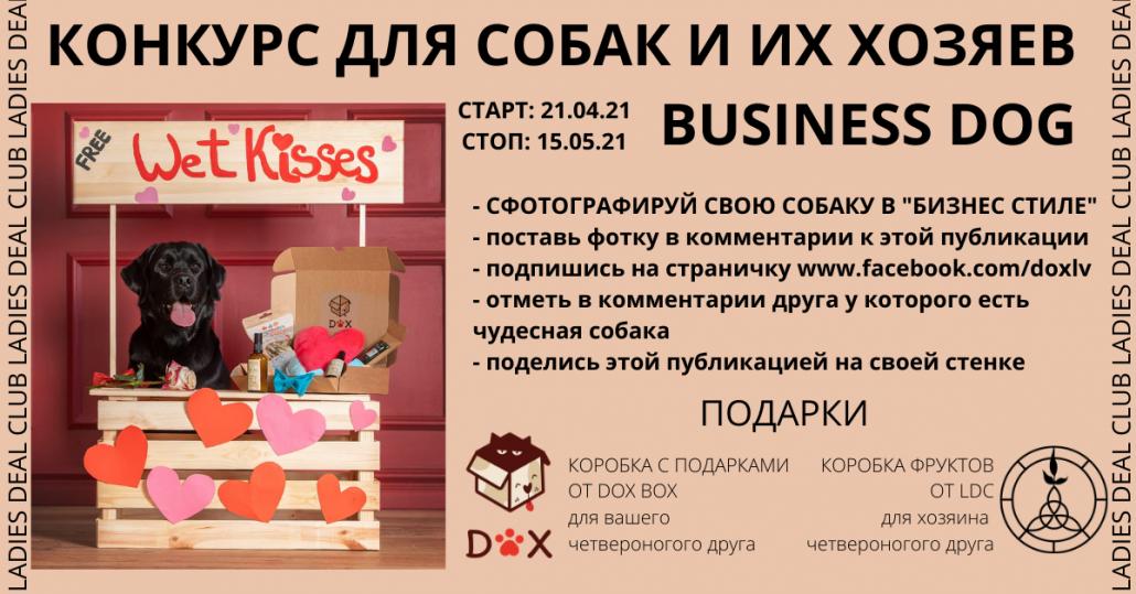 КОНКУРС для хозяев четвероногих друзей. Business DOG 8